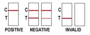 card.2.jpg