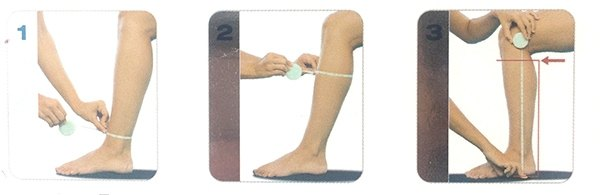 compression-stockings-size.jpg