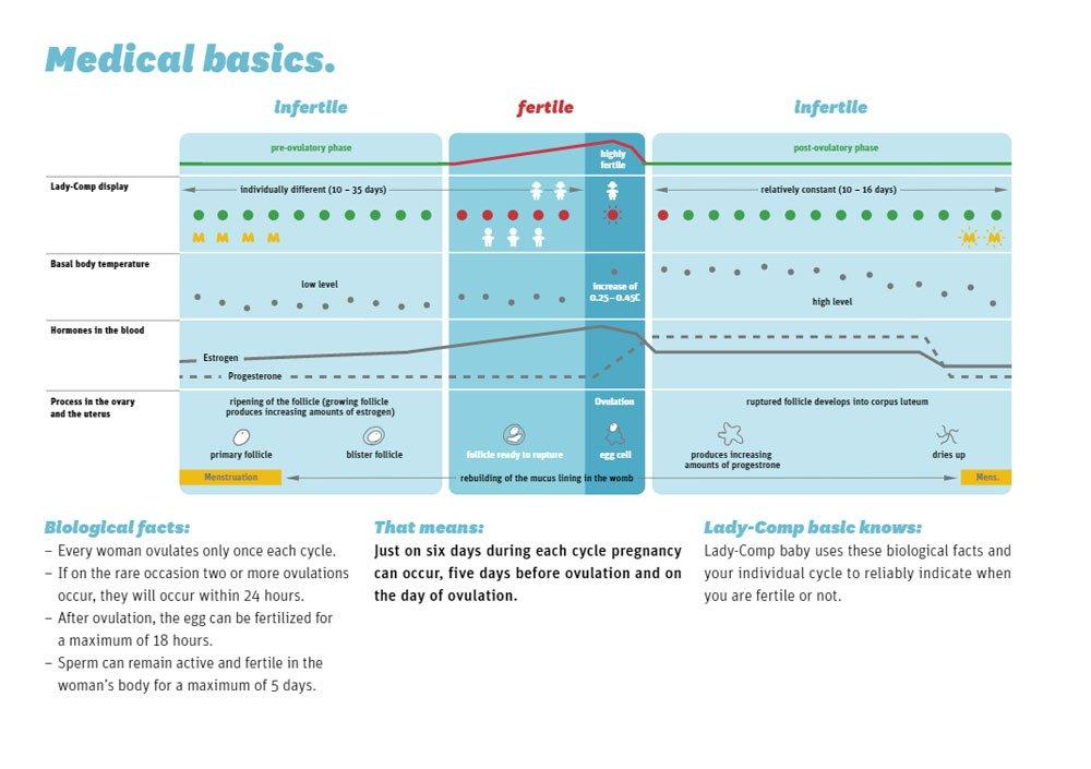 ladycomp-diagram.jpg